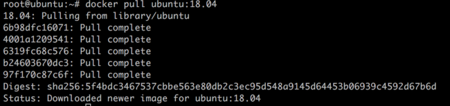 Docker successful download of Ubuntu image